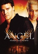 Angel: Season 5